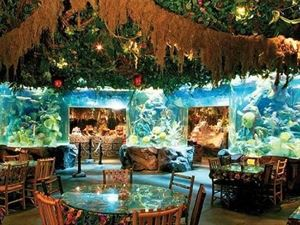 Rainforest Cafe At Downtown Disney Marketplace