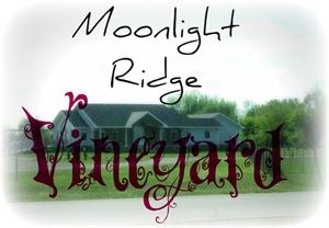 Moonlight Ridge Vineyard