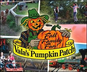 Vala's Pumpkin Patch