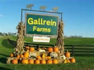 Gallrein Farms