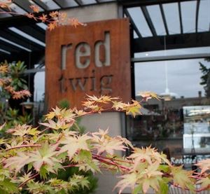 Red Twig Bakery Café