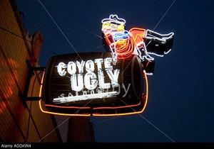 Coyote Ugly Saloon Memphis