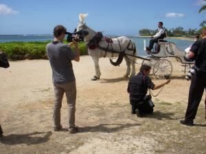 Honolulu Horse and Carriage Limited