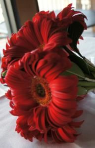 Jubilee Floral and Event Design