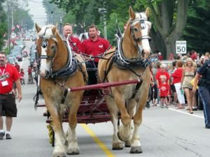 Humes Horse Drawn Carriage Rides