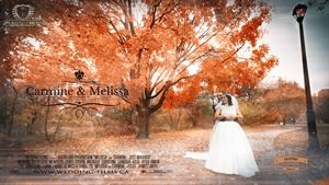 Wedding-Films