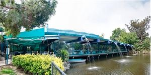 Anthony's Fish Grotto