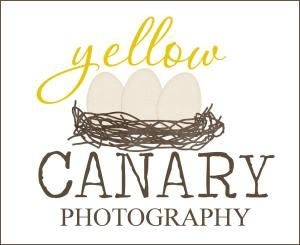 Yellow Canary Photography