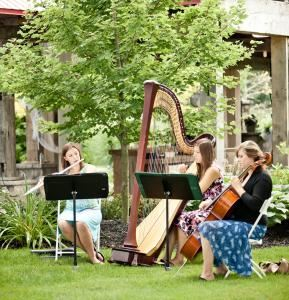 The Soenen Sisters-Harp, Flute and Cello for Weddings and Events